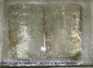 HrupSkP0323.jpg